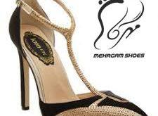 انواع کفش زنانه مجلسی